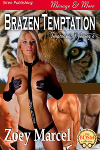 Brazen Temptation eBook Cover, written by Zoey Marcel