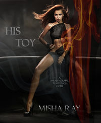 His Toy eBook Cover, written by Misha Ray