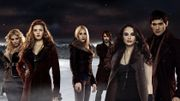The Denali Coven of the Twilight Saga by Stephenie Meyer