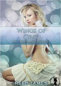 Wings of Gray eBook Cover, written by Reed James