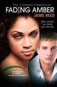 Fading Amber Book Cover, written by Jaime Reed