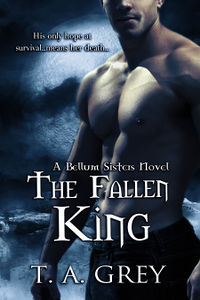 The Fallen King Book Cover, written by T. A. Grey