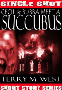 Cecil and Bubba Meet a Succubus eBook Cover, written by Terry M. West