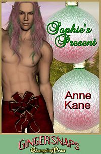 Sophie's Present eBook Cover, written by Anne Kane