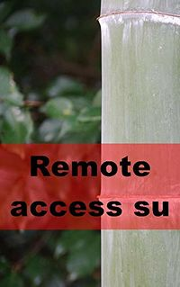 Remote Access Succubus eBook Cover, written by Bertha Grimes