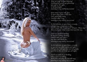 Wintry SuccuLand by TeraS