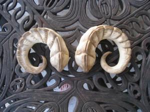 Succubus Horns by KantiKane