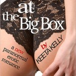 Succubus at the Big Box by Keeta Kelly