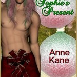 Sophie's Present by Anne Kane