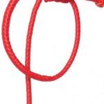 Devil Tail Whip