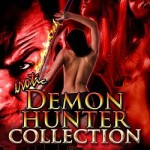 Erotic Demon Hunter Collection by Julianne Reyer
