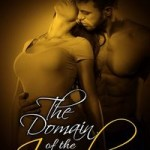 The Domain of the Incubus by Desiree Silver