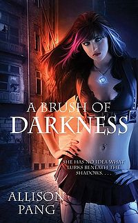 A Brush of Darkness Book Cover, written by Allison Pang